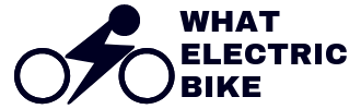 What Electric Bike